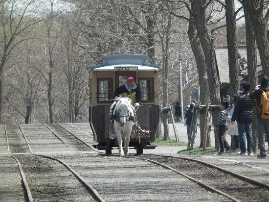 北海道開拓村の馬車の写真