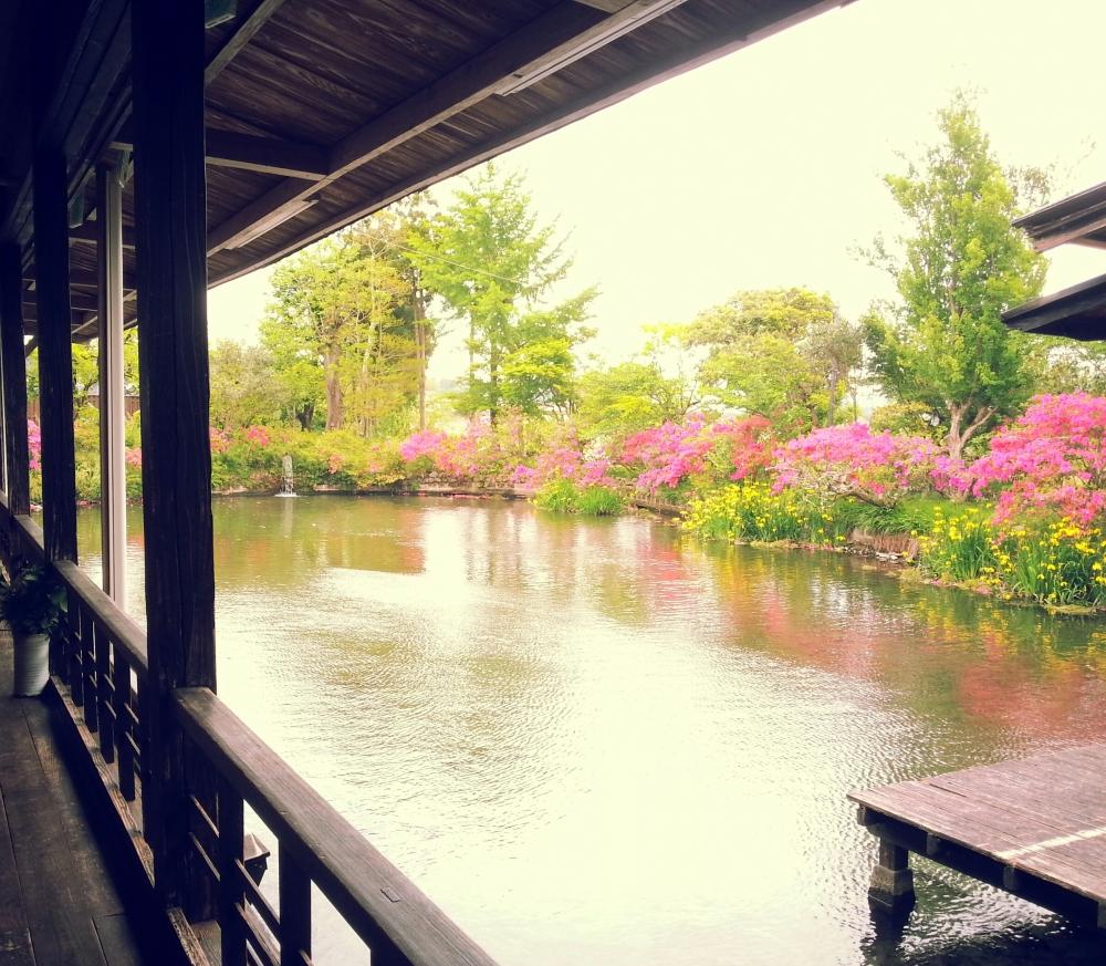 熊本 人吉温泉 しらさぎ荘 食事処の写真