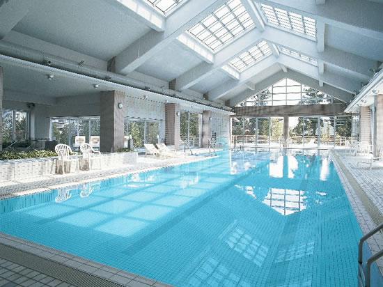 宮城 秋保温泉ホテルニュー水戸屋 プールの写真