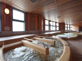 宮本武蔵温泉ケアガーデン武蔵の里 温泉の写真
