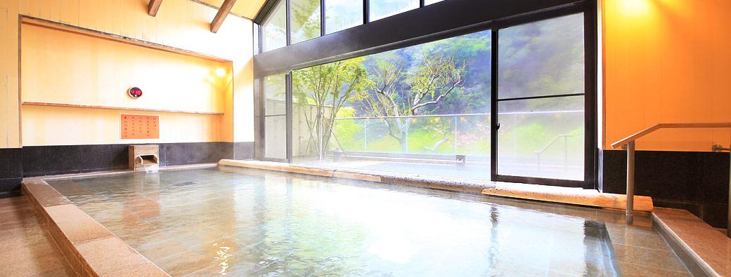 中川温泉信玄館 温泉の写真