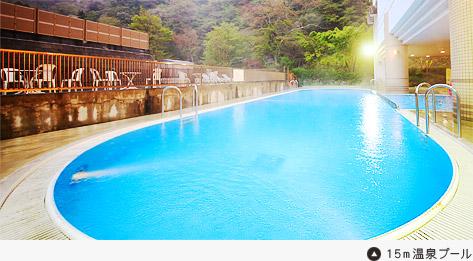 中川温泉信玄館 温水プールの写真