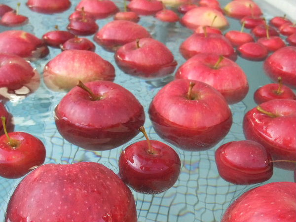 山形 りんご温泉 りんご風呂の写真