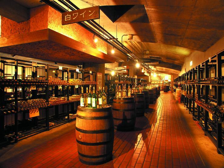 山梨 甲州市勝沼ぶどうの丘 ワインカーヴの写真