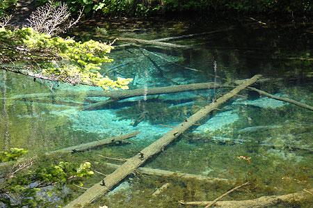 北海道 湯の閣 池田屋 神の子池の写真