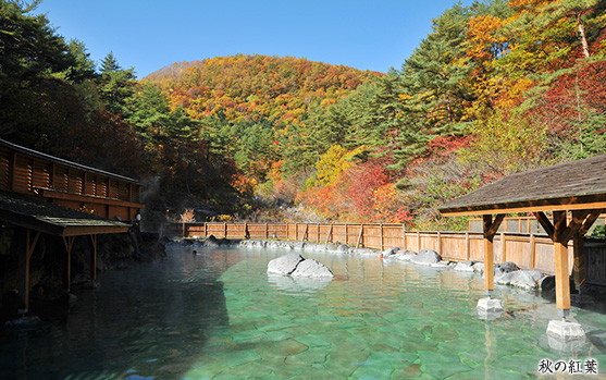 出典 : -草津温泉-西の河原露天風呂