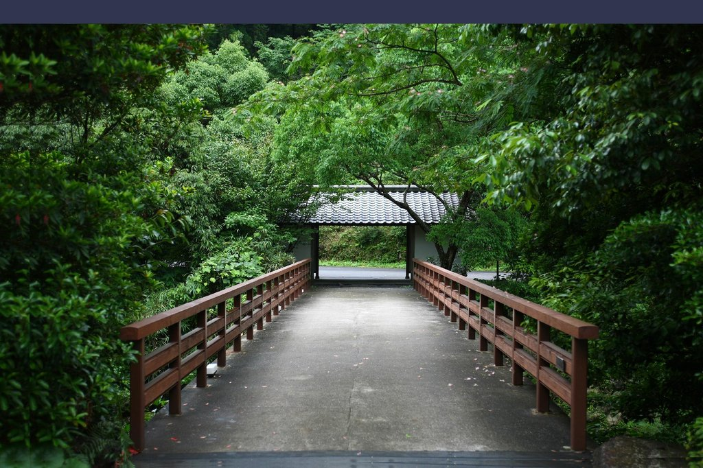 佐賀 椎葉山荘 蛍橋の写真