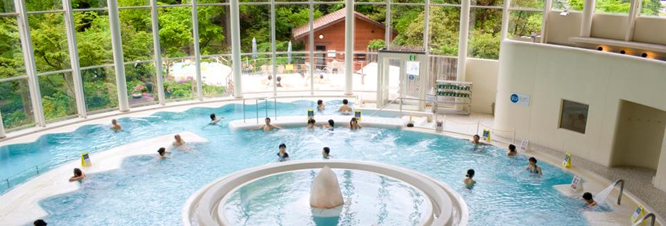 豊島園 庭の湯 プール