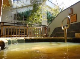東京 清水湯 露天風呂の写真