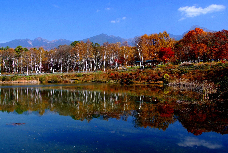 八ヶ岳 風景