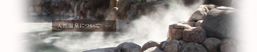 天然温泉 なにわの湯