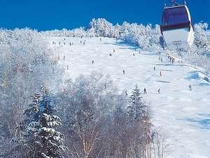 良質な雪上を初滑りしませんか?