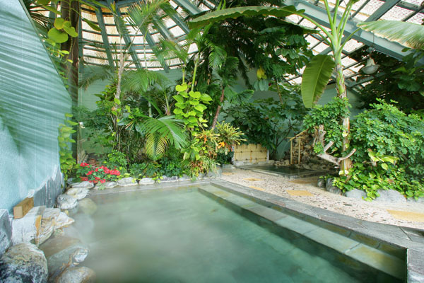 150坪のジャングル風呂からは雄大な太平洋を見下ろすことができるホテルジャングルパレス