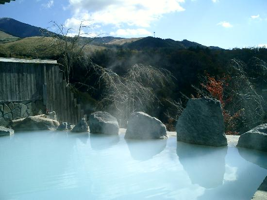 岳の湯温泉 豊礼の宿 露天風呂