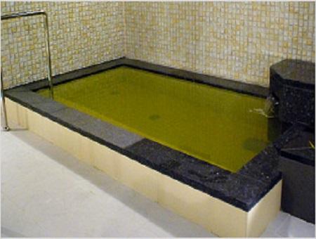 梅田周辺 天然温泉ひなたの湯 炭酸泉