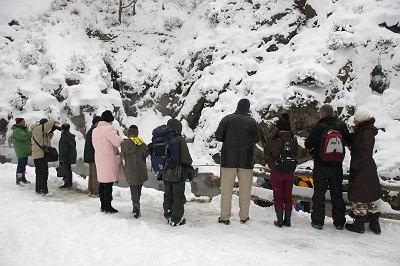 猿 温泉を見学する人々