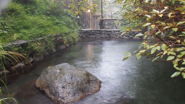 木陰と大きな岩が特徴