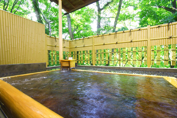 埼玉県 丸山鉱泉旅館 薬草温泉の写真
