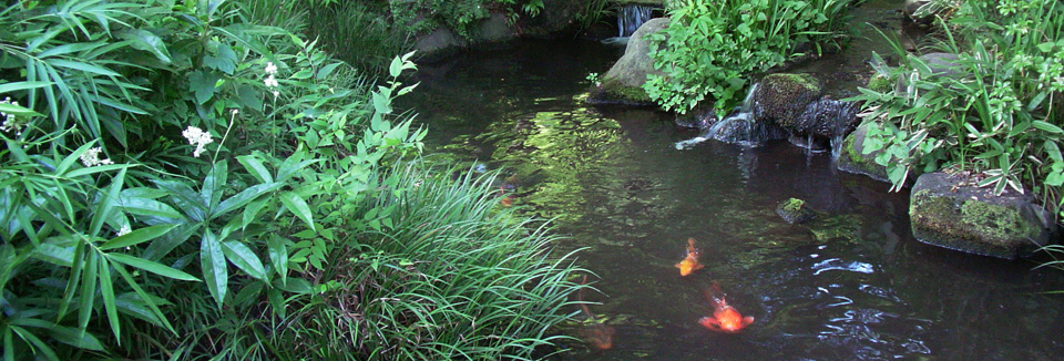 豊島園 庭の湯 温泉