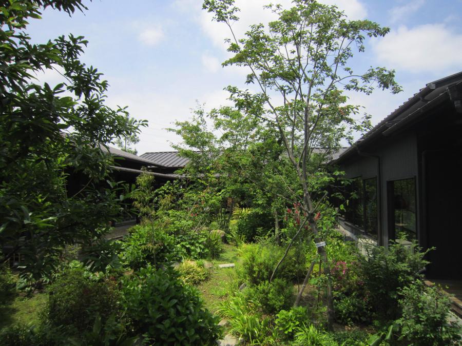 杉戸温泉「雅楽の湯」の中庭の写真