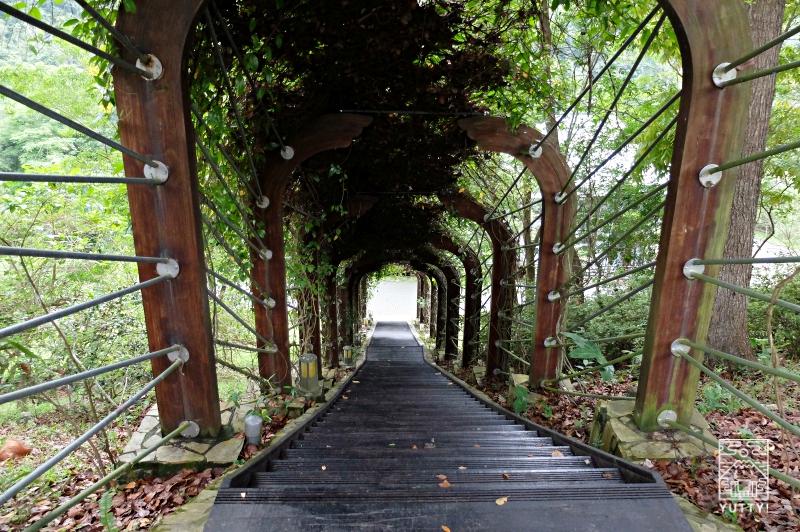 知本森林文化園区の園内の写真