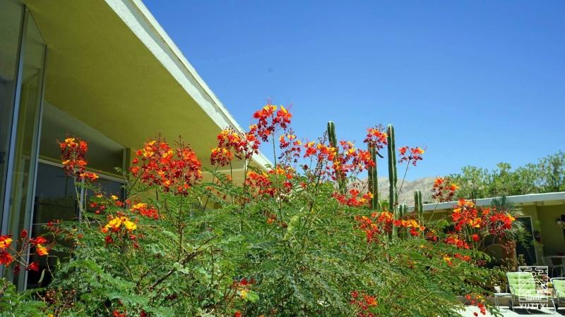 HOPE SPRINGS RESORTの中庭の写真