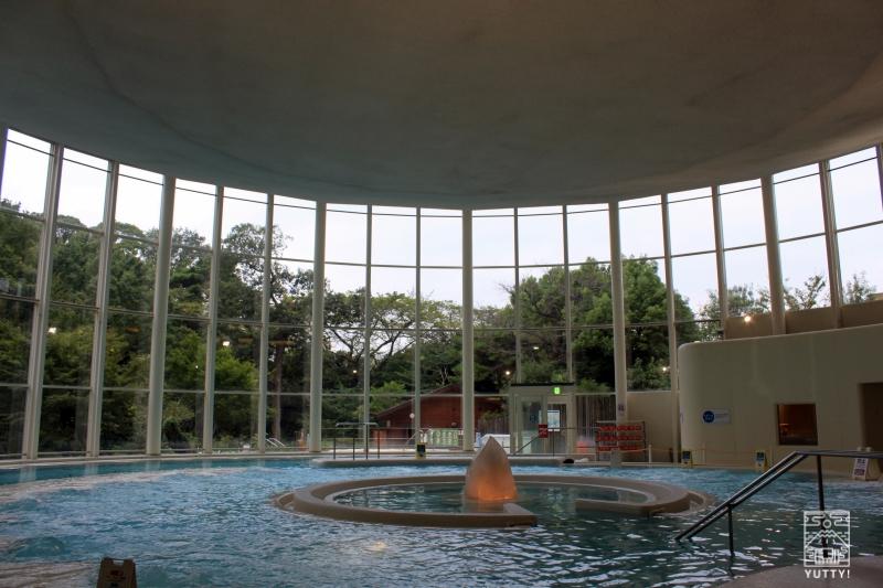 豊島園 庭の湯のバーデゾーンの写真
