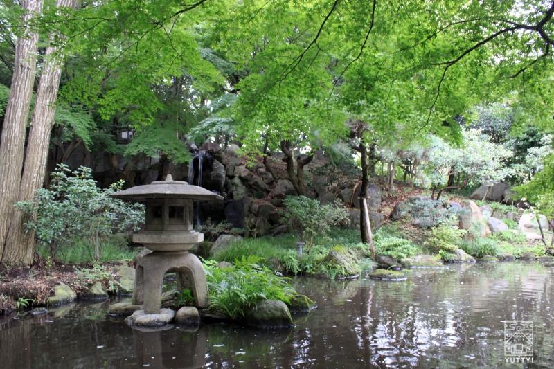 豊島園 庭の湯の日本庭園の写真