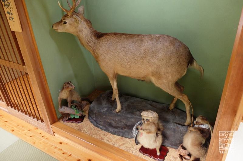 コンヤ温泉【大野木荘】の動物の剥製の写真