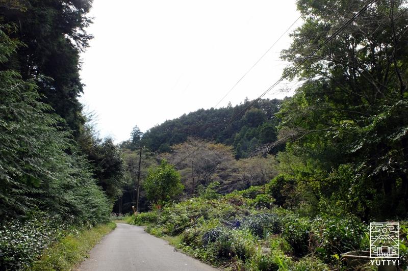 油山温泉の周辺の写真