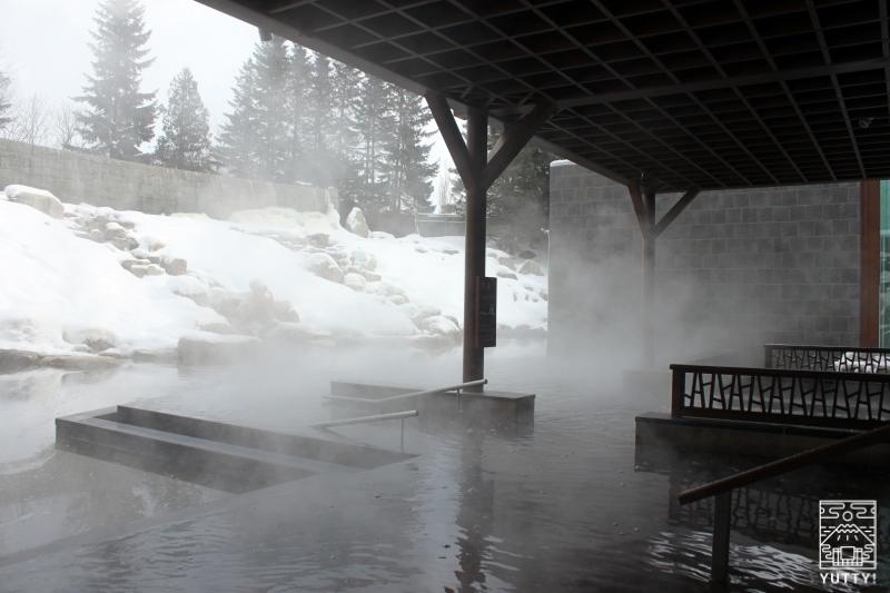 十勝川温泉第一ホテル「森の清流・滝壺の湯」の浴槽の写真