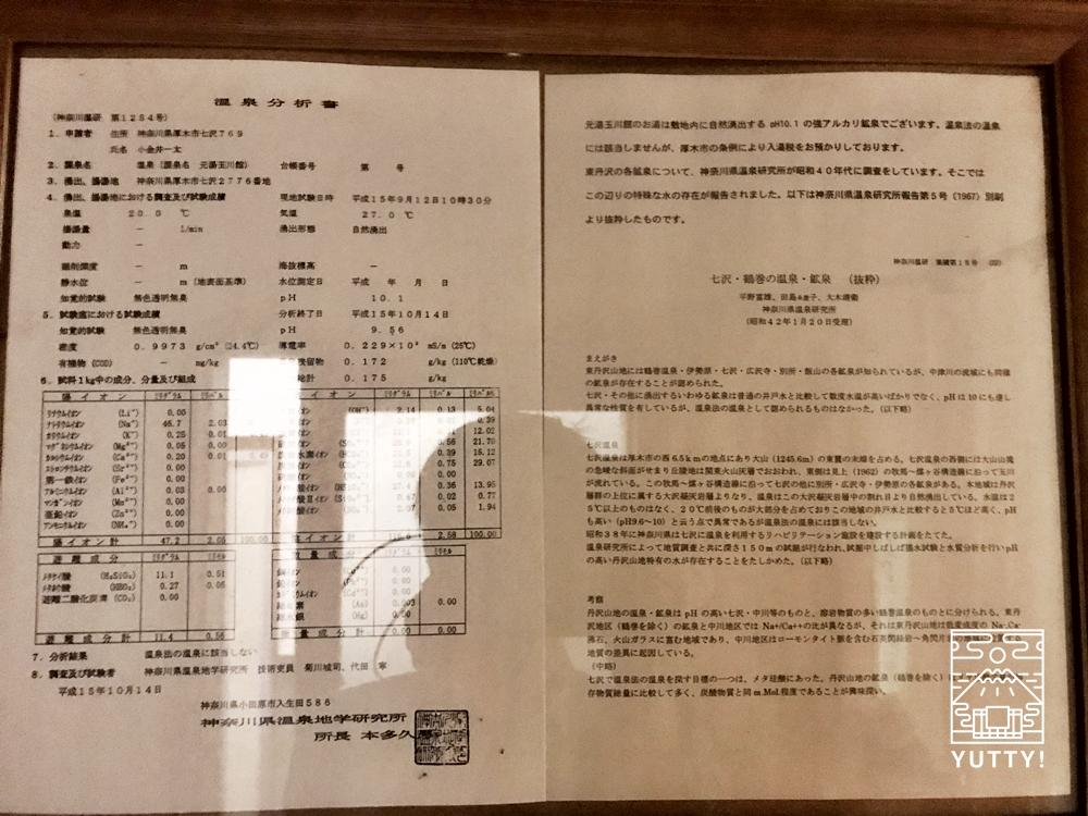七沢温泉元湯玉川館の温泉分析書