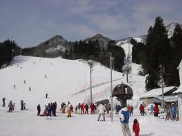 村上市ぶどうスキー場